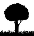 silhouette of a tree and grass vector image