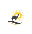 camel icon logo template design vector image vector image