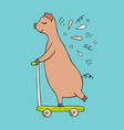 hand-drawn pig riding on a scooter vector image