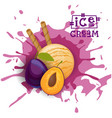 ice cream plum ball fruit dessert choose your vector image vector image