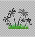 palm trees silhouette and green grass on the vector image vector image