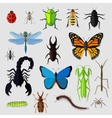 set various insects design flat vector image