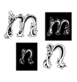 Two letters M and N in floral style vector image vector image