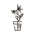 web line icon flower in a pot line art icon vector image