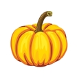Pumpkin on a white background vector image