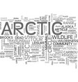artic tours text word cloud concept vector image vector image