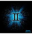 gemini luminous vector image vector image