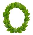letter o green leaves alphabet vector image vector image