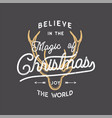 merry christmas lettering believe in the magic of vector image