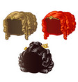 set of vintage womens wigs for a holiday or a ball vector image
