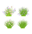 spring and summer floral bundles set with white vector image vector image