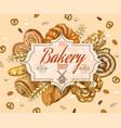 Vintage bakery banner vector image