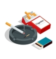 Box of matches cigarettes pack cigarette on vector image