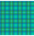 scottish cage green seamless pattern vector image