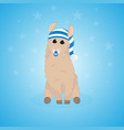 cartoon llama cute lama alpaca card on colorful vector image