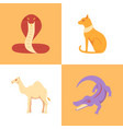 egypt sacred animal icons set in flat style vector image