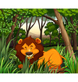 Lion living in the dark forest vector image vector image