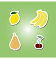 set of color icons with fruits for your design vector image