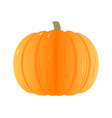 flat pumpkin isolated on white background vector image vector image