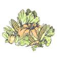 fresh vegetables set on white in graphic design vector image