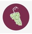 Hand-drawn grape ripe icon White wine vector image vector image