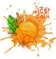 ice cream carrot ball dessert choose your taste vector image vector image