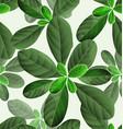 leaf pattern background2 vector image