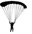 Skydiver silhouettes parachuting vector image vector image
