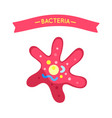 star-shaped bacteria applique with tape poster vector image vector image