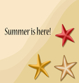 Summer text frame with sea stars vector image