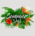 tropical summer sale background with exotic vector image vector image