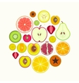 Fruit Slices Round vector image