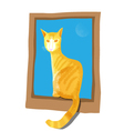 Cat Sitting On The Window vector image