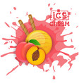 ice cream peach ball fruit dessert choose your vector image vector image