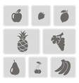 set of monochrome icons with fruits vector image