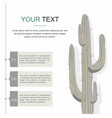 cactuses isolated on white background vector image vector image