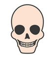 death skull icon vector image