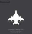 fighter airplane premium icon vector image vector image