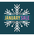 january sale vector image