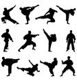 karate fighting vector image vector image