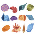 set cartoon seashells a collection sea vector image