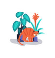 cute and playful kitten damage houseplant vector image vector image