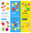 fruits and berries 3d banner vecrtical set vector image