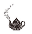 kettle with herbal tea vector image