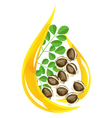 moringa oleifera oil vector image vector image