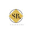 sb letter logo with golden foil texture vector image