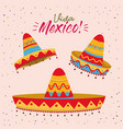 viva mexico colorful poster with set of mexican vector image