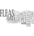 Astamp out fleas with organic pest control text vector image