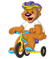 bear on tricycles vector image vector image