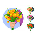 bouquet of tulips in hand vector image